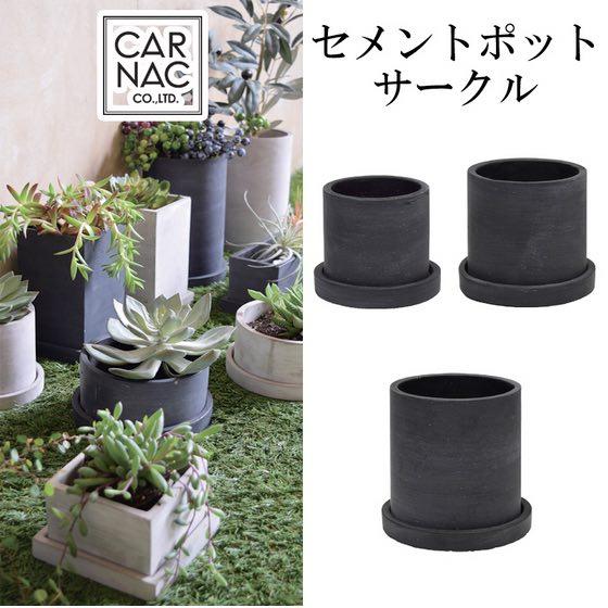新色ブラック セメントポットサークルブラック Sサイズ多肉植物やミニサボテンなどに