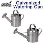 観葉植物、塊根植物、多肉植物への水やりに GALVANIZED WATERING CAN
